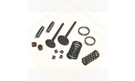 Engine Valve kit